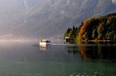 View of Bohinj Lake #bohinj #Slovenia #SloveniaHolidays #sloveniatourism #sloveniatravel #nature #flower #LakeBohinj #SloveniaLakeBohinj #SloveniaLake