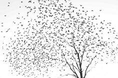 Bye Bye Birdy  -- new tat idea! love the details