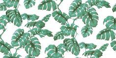 Tarovine White / Green (H1505-4) - House Of Hackney