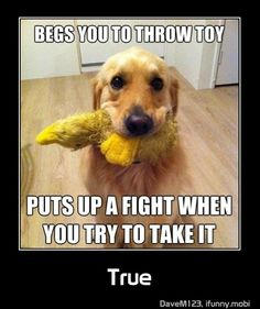 yup so true...my harley boy does this all the time lol
