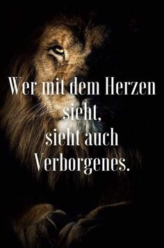 SoulMe repräsentiert keine reine Dating-App, sondern vielmehr eine generelle Pl. SoulMe does not represent a pure dating app, but rather a general platform for getting to know each other. Plan General, Idioms And Proverbs, Lion Quotes, Lion Love, German Language Learning, Hobbies For Men, Lifestyle Quotes, Clever Quotes, Thats The Way