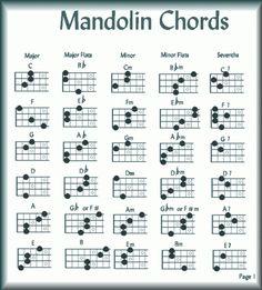 Easy Mandolin Chords | Musicians... Old and New Media Item: Mandolin Chords 1 - DailyStrength