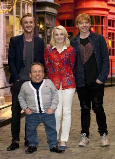 Draco, Luna, Ron y Flitwick