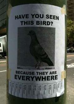 really funny :-)
