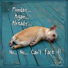 So not ready for Monday to be here!