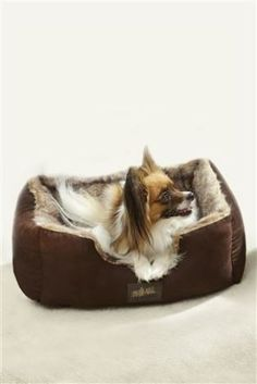 Luxury Faux Fur Small Dog Bed