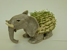 The Calvert Canvas: Adventures in Middle School Art!  Ch-ch-ch-chia pets !! LOVE IT!