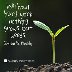 """Sometimes even when we work very hard, a """"Weed"""" keeps bugging us, but to push forward is what we are asked to do. To take the high road and turn the other cheek. That is what Christ taught. No other person on this earth can say what I believe or who I am. Only my judge can, who is Christ, he died for my sins. That is who matters, not imperfect people in a very very imperfect world"""