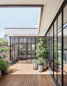 The Design Files - Flemish Architecture Revived In Cremorne - Photo, Benjamin Hosking. Apartment Balcony Garden, Apartment Entryway, Balcony Plants, Outdoor Balcony, Apartment Balconies, Cool Apartments, Apartment Interior, Outdoor Spaces, Apartment Ideas