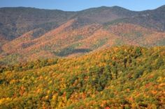 Asheville, NC, one of fifteen beautiful towns for fall foliage | BedandBreakfast.com