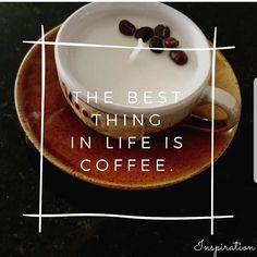 Velas de cafe, velas en cera de soya natural, soy candles Design Lab, Soya, Coffee Candle, Pudding, Craft Ideas, Candles, Inspiration, Natural, Desserts