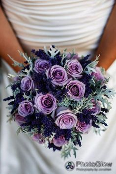 purple wedding flowers purple roses lavender and dusty miller bridal bouquet wedding Purple wedding flowers in Category Marie's Wedding, Lilac Wedding, Wedding Colors, Dream Wedding, Wedding Ideas, Trendy Wedding, Wedding Bridesmaids, Light Purple Wedding, Lavender Weddings