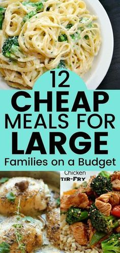 Cheap meals for large families on a budget. Save money with these recipes. Check out these frugal meals for large families! # easy dinner recipes on a budget 12 Delicious Frugal Meal Ideas for Large Families on a Budget - Balancing Bucks Cheap Family Meals, Cheap Easy Meals, Cheap Dinners, Frugal Meals, Budget Meals, Inexpensive Meals, Healthy Cheap Meals, Meals For Large Families, Healthy Recipes On A Budget