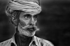 500 pix macro images. Distant Gaze