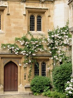 Roses in Magdalen College, Oxford | Poppins | Flickr - Photo Sharing!
