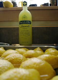 Pallini è il presidente! (Crop)