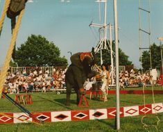 Bentley Bros Circus: (1986) Photo was taken in New Bedford, MA on August 9, 1986. The young lady with the African elephant is Dianne.