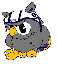 rice university owl - Google Search Rice University, Water Polo, Polo Club, Cookie Decorating, Owl, College, Baking, Google Search, Disney Characters