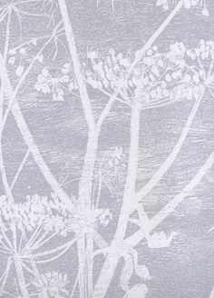 Cow Parsley wallpaper from Cole and Son