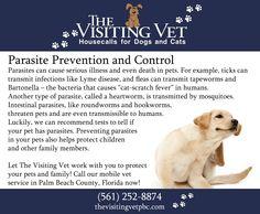 The Visiting Vet | Wellington, FL