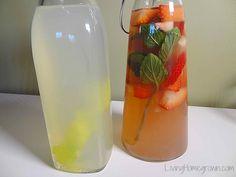 How to flavor water kefir - Living Homegrown