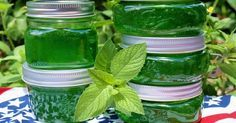 Menta lekvár: nem csak finom, de a szervezet számára is igen hasznos! Mint Recipes, Jelly Recipes, Jam Recipes, Chutneys, Diet To Reduce Cholesterol, Mint Jelly, Green Life, Saveur, Pickles