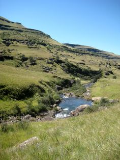 ★ℒ ★Pholela river, Underberg The Places Youll Go, Great Places, Earth And Solar System, South Afrika, Africa Destinations, Kwazulu Natal, Trees To Plant, Us Travel, Rivers
