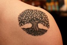 45 Best Tree Of Life Shoulder Tattoos For Women Images Cool