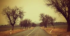 The world's truly unlimited photo gallery. Country Roads