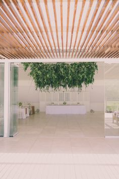 Gallery – Nicole & Nicholas | hayley takes photos Flowers in the Foyer Hanging Flower Arrangements, Hanging Flowers, Foyer, Gallery, Plants, Photos, Pictures, Roof Rack, Plant