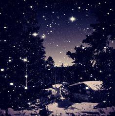 In a winter wonderland! #snow #mammoth