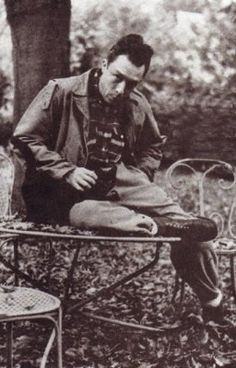 Chats d'écrivains - Albert Camus