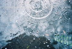 rain, water, and nature image Coraline, Ragnor Fell, Guzma Pokemon, Asui Boku No Hero, Karin Uzumaki, Khadra, Secrets Of The Universe, Sailor Mercury, Noragami