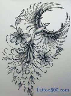 phoenix tattoo draw