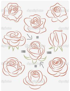 Set of roses. Set of roses. Royalty free set of roses vector illustration stock vector art and more images of abstract - Art Floral, Easy Drawings, Pencil Drawings, Horse Drawings, Images Of Drawings, Pencil Art, Flower Drawings, Images Photos, Tattoo Drawings