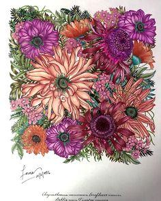 Medium. :  Prismacolor Premiere coloured pencils. Book. :  Floribunda by Leila Duly