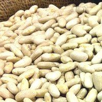 Health Benefits of Cannellini Beans - WOW!!