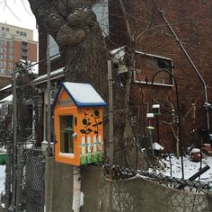 Our very own local @littlefreelibrary on Vaughan Road North of St Clair. #stclairwest #toronto  This library was made by and managed by my neighbour Jude. Stop in to borrow a book or donate an interesting title to share with the neighbourhood
