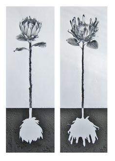 Saatchi Art: Protea Roots (Diptych) Drawing by Ira van der Merwe Acrylic Painting Lessons, Oil Painting Abstract, Watercolor Artists, Painting Art, Watercolor Painting, Nature Drawing, Saatchi Online, You Draw, Figurative Art