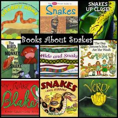 Books About Snakes, Snake Activities and Gail Gibbons Virtual Book Club Linkup