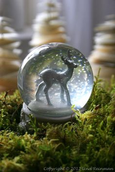 Snow Globes, Christmas feelings...