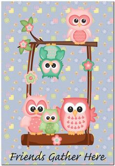 Friends Gather Here Funny Owls