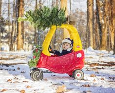i got this whole tree thing under control raleigh portrait photographer m cubed photos holiday photos pinterest portrait photographers