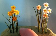 Tips on making up daffodil kits (I have one)