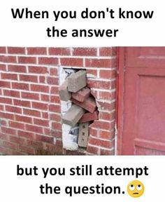This is how I feel while attempting Mathematical questions with unfamiliar concepts! Funny Pranks, Funny Texts, Funny Jokes, Funny Kids, The Funny, Funny Images, Funny Pictures, Haha, Tumblr Facebook