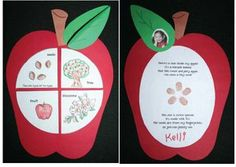 Apple activities: FREE Life Cycle of an Apple printables. The seeds are finger prints. Preschool Apple Theme, Apple Activities, Fall Preschool, Kindergarten Activities, Sequencing Activities, Measurement Activities, Apple Life Cycle, Apple Unit, Apple Books