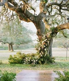 Dreamy inspiration from my friend wedding this past fall on her now husband's family's ranch in south Texas. Is this not the epitome of Ranch Wedding Glam! So whimsical & perfect way to highlight the ceremony backdrop! Wedding Ceremony Backdrop, Outdoor Wedding Decorations, Garland Wedding, Ceremony Decorations, Wedding Flowers, Arch Wedding, Wedding Ideas, Wedding Trends, Wedding Bells