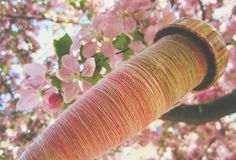Pink Blossoms vs. AaronMakesStuff Rainbow Coloured spindle