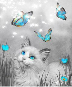 Ragdoll Kitty And Butterflies Art Print by Carol Cavalaris. All prints are professionally printed, packaged, and shipped within 3 - 4 business days. Choose from multiple sizes and hundreds of frame and mat options. Cat Embroidery, Molduras Vintage, Butterfly Canvas, Frida Art, Image Chat, Cat Drawing, Crazy Cats, Cat Art, Cats And Kittens