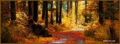 25 Autumn/Fall Facebook Covers To Spruce Up Your Timeline - Maria Muir.com